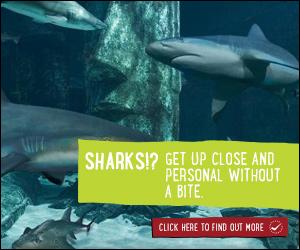 KidRated, Sea Life London Aquarium, sharks