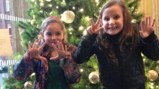 christmas tree royal albert hall