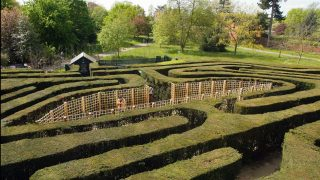 Maze Hampton Court Palace KidRated Reviews by kids and family offers