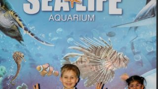 children k-rate London sealife aquarium