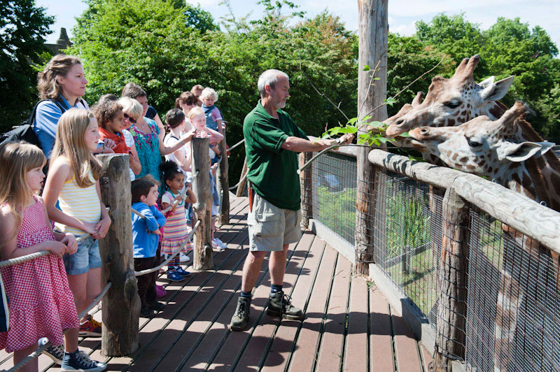 Things To Do In London For Teens Kidrated - Children's birthday party london zoo