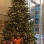 boys rate the shangri la christmas tree