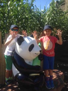 boys review london attraction ZSL London Zoo