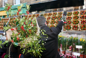 Columbia Road flower market christmas