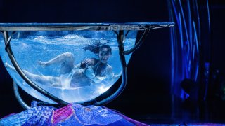 Cirque du Soleil Amaluna Royal Albert Hall