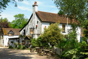 bush inn ovington sarah parish best days out hampshire