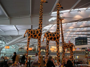 giraffe terminal 5 julia bradbury best days out