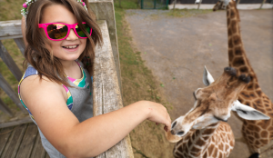 blackpool zoo kidrated toddler friendly things to do