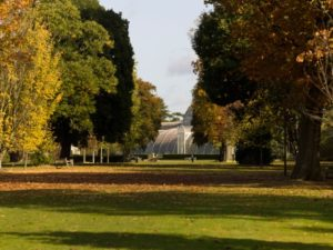 Kew Gardens autumn vista