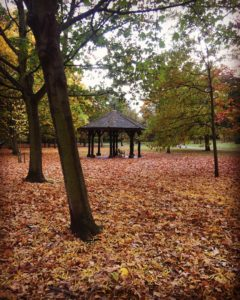 regents park autumn